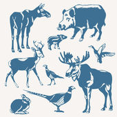 Vector wild animals and birds on a white backgroun