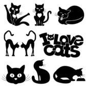 Vector Cat signs isolated on white background