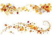 Podzimní listí hranice