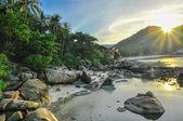 Limestones panoramic tropical beach with coconut palm. Koh Samui