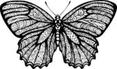 Butterfly graphic style hand drawn black and white isolated vector illustration
