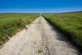 Středozápadní venkovské silnici v Kansasu tallgrass prairie zachovat