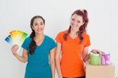 Volba barvy pro malování pokoj přátel