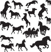 19 black vector images of horses on a white background