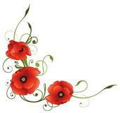 Pipacsok, virágok, dekoráció