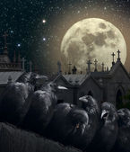Night of the crows