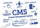 The content management system is a computer program that allows publishing editing and modifying content as well as maintenance from a central interface Infografic with Keywords and icons