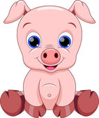 Illustration of cute baby pig cartoon