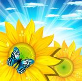 Ladybirds enjoys leafs on beautiful summer dayVector illustration