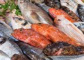 Smíšené ryby na prodej na trhu