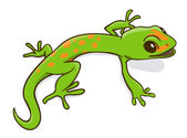 Green little cartoon gecko Vctor Illustration