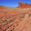 Постер, плакат: Red Rock Landscape Southwest USA