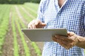 Zblízka zemědělce pomocí digitálních tabletu na ekologické farmě
