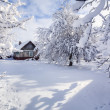 Постер, плакат: Winter fairytale in the mountain village
