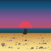 Corgi dog on the beach meets the sunrise