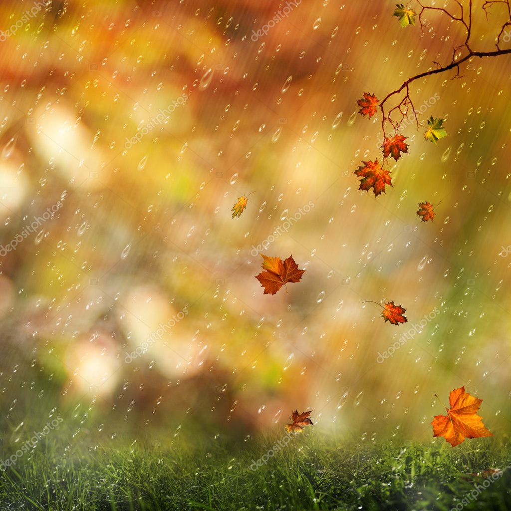 Sweet autumn rain on the meadow, abstract natural backgrounds