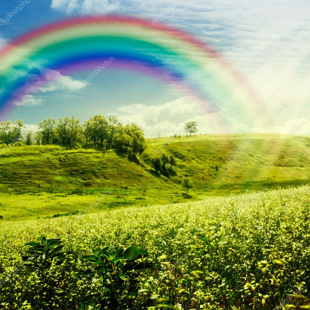 Rainbow on the meadow.