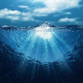Fotografie Podvodní svět, abstraktní mořského prostředí