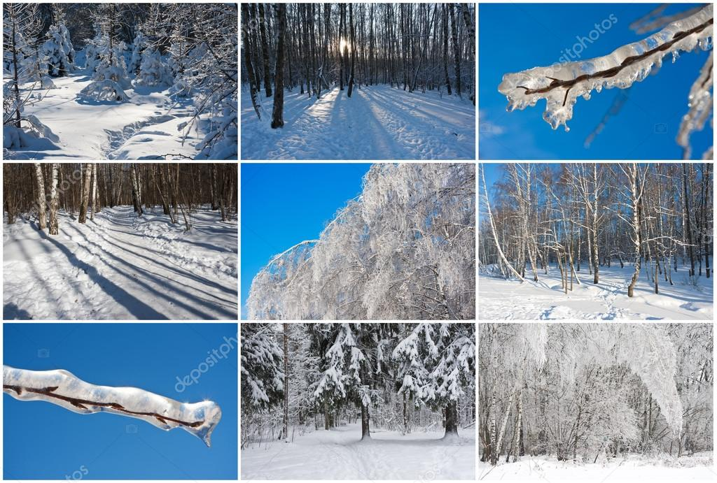 фото коллаж краснообск зимой увы