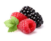 Malina s blackberry