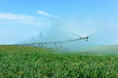 irrigation system watering