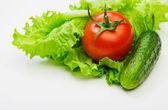 čerstvá červená rajčata na salátových listech