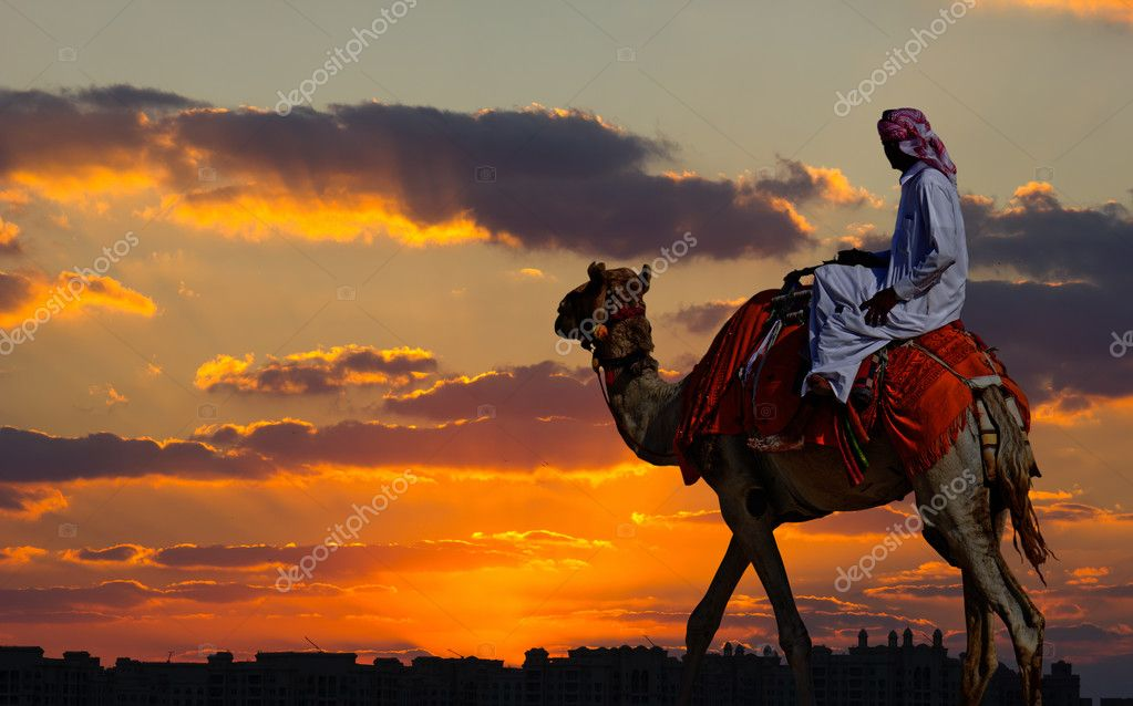 Bedouin on a camel in the desert and a modern city on the horizo