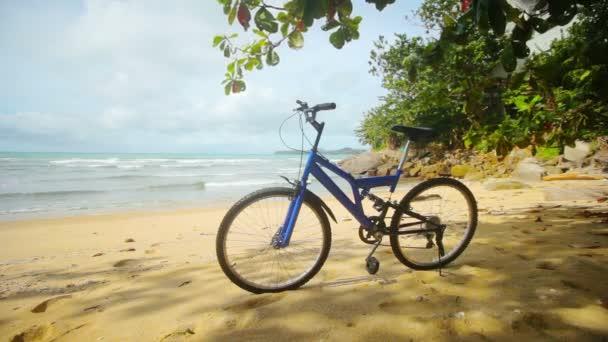 Video 1920x1080 - Blue modern mountain bike parked on a tropical beach