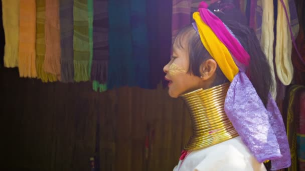 CHIAND RAI, THAILAND - 04 DEC 2013: Kayan Lahwi (Long-Necked Kayan) woman with neck rings in hill tribe village.