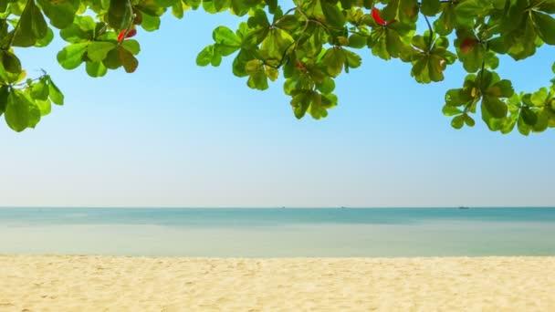 video ve vysokém rozlišení - opuštěné tropická pláž. Sihanoukville, Kambodža