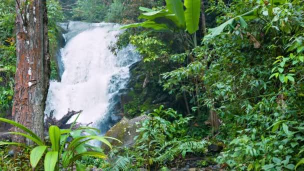 videa 1080p - obyčejné vodopád v deštném pralese v Thajsku
