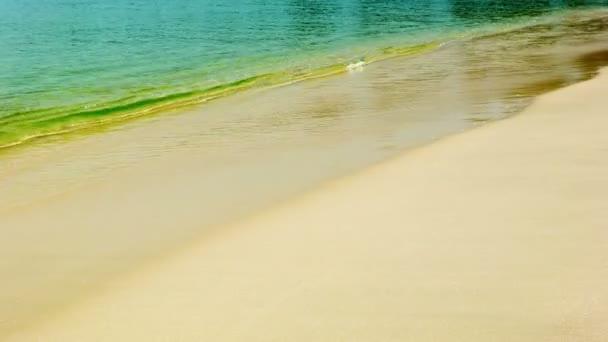 videa 1080p - klidné tropické moře a písečná pláž
