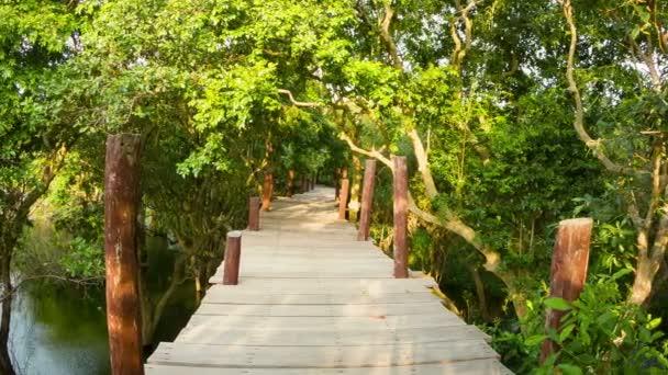Video 1920 x 1080 - vysoký dřevěný most přes vodu v buši v Kambodži