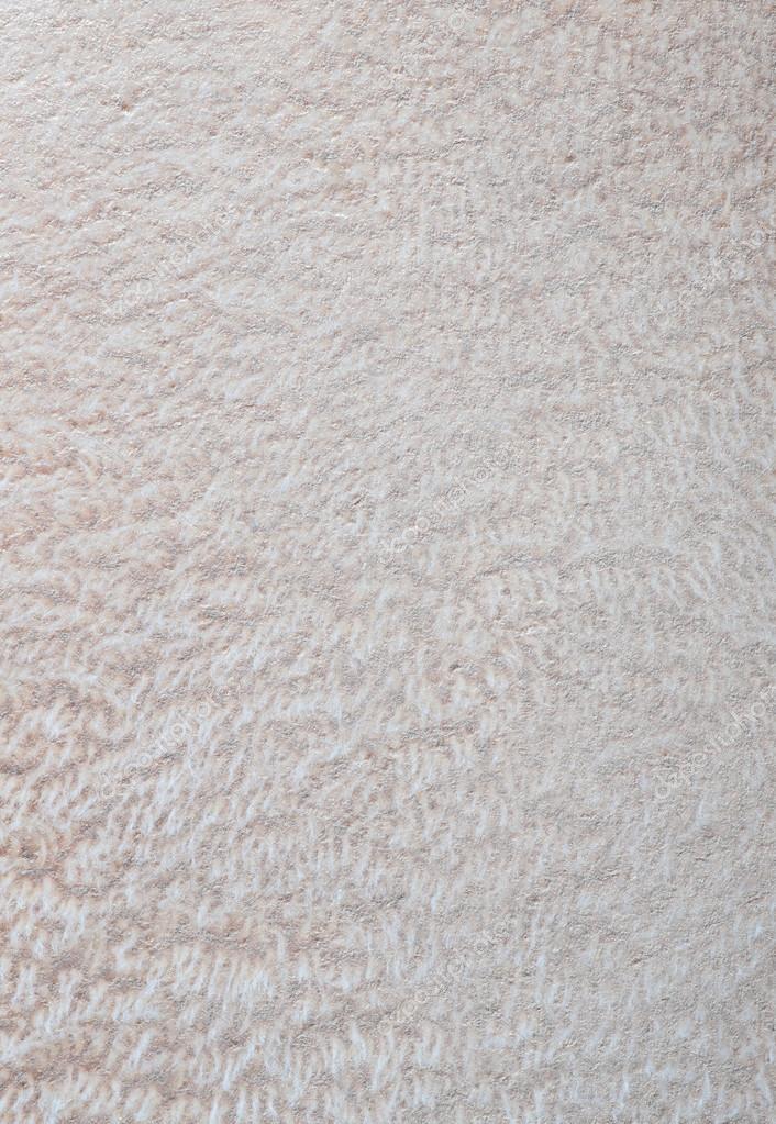 white carpet background. white texture shaggy carpet background \u2014 photo by pakhnyushchyy