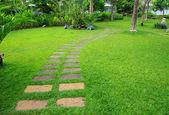 Fotografie Zelená zahrada