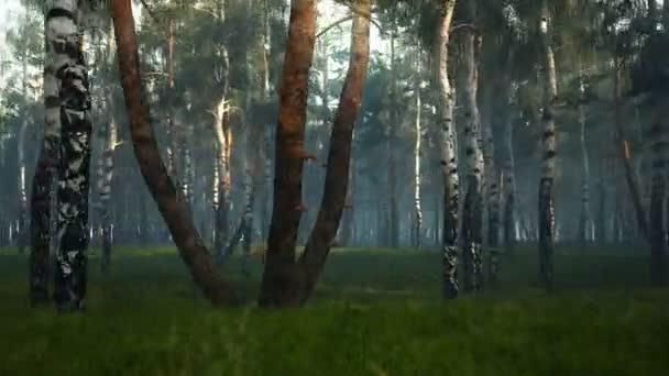 repülés-erdőben