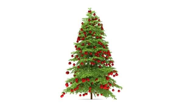 Vánoční strom, samostatný