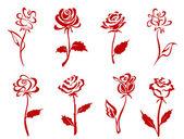 gyönyörű vörös rózsa