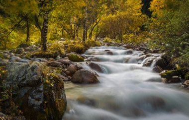 Mountain river rapids in autumn