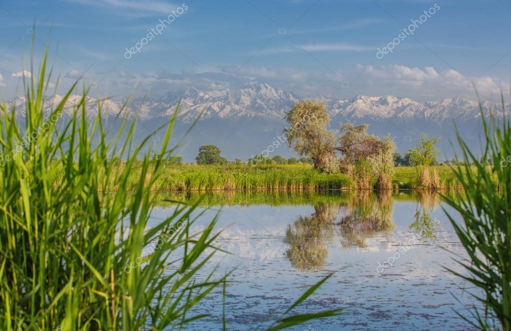Фотообои Пейзаж с прудом