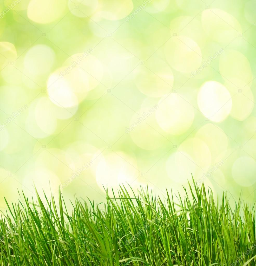 Abstract Green Natural Background Stock Photo C Antonel 41305675