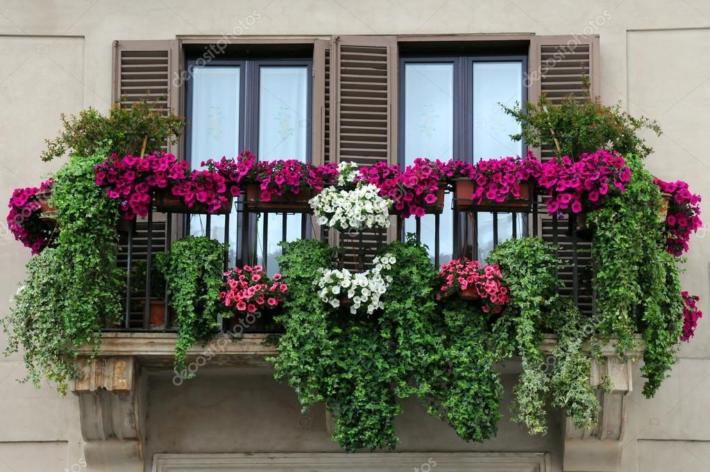 Giardino Sul Balcone Di Casa : Orto in casa in quanti modi si può realizzare garden us