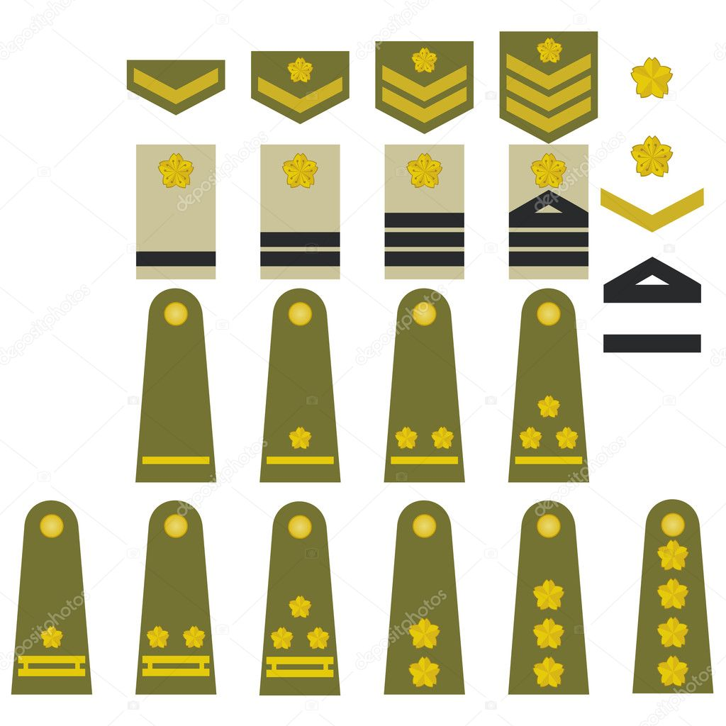 Turkish army insignia stock vector guarding 13783253 epaulets military ranks and insignia illustration on white background vector by guarding biocorpaavc Images