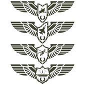 Fotografia distintivi esercito-2