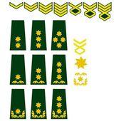 Fotografia forze armate georgiane insegne