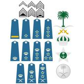 Fotografie Air Force insignia Saudi Arabia