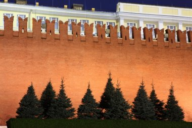 Kremlin wall and Senate in Red Square, Moscow, Russia