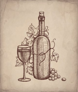 Pencil drawing of wine bottle