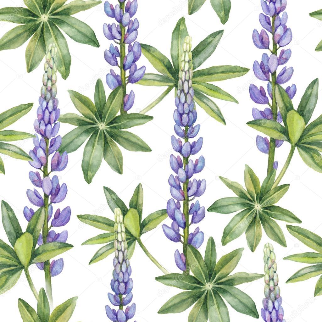 Patrón de flores de lupino silvestre — Foto de stock © Sashsmir ...