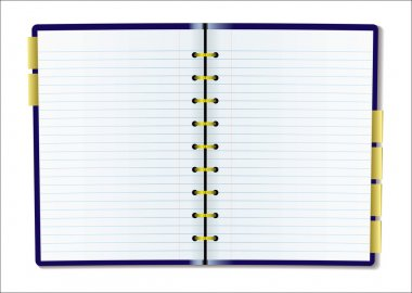 Blank diary page